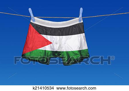 stock photo of underwear with the palestine flag on a string