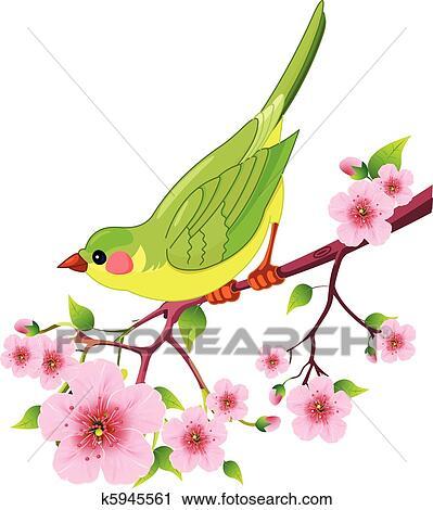 Clipart Frühling Vogel K5945561 Suche Clip Art Illustration