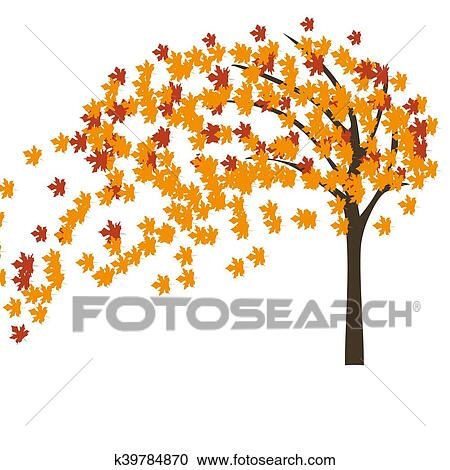 Autumn Maple Tree In The Wind Clipart K39784870 Fotosearch