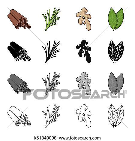 Cannelle écorce épicé Romarin Racine Gingembre Baie Leaf épices Ensemble Collection Icônes Dans Dessin Animé Noir Monochrome Contour
