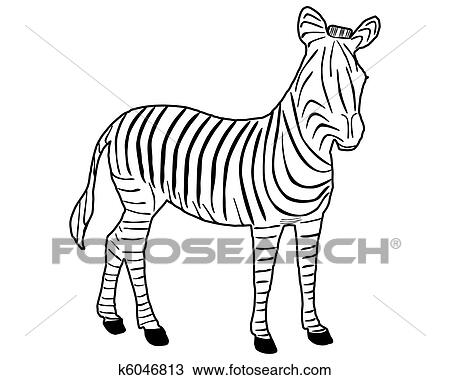 Drawing Of Zebra Stripes K6046813 Search Clipart Illustration