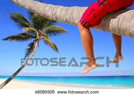 Stock Image Caribbean Inclined Palm Tree Beach Tourist Legs Fotosearch Search Photography