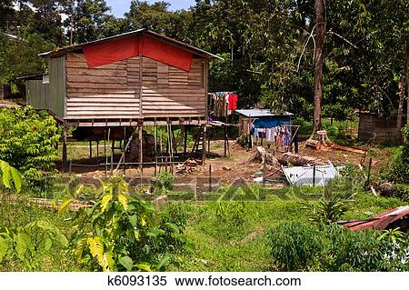 Long house of the Iban tribe Stock Photography | k6093135