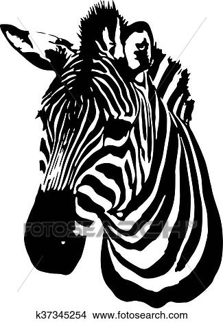 Clipart Of Zebra Head K37345254
