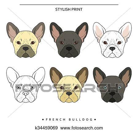 Set Mete Schizzo Bulldog Francese Differente Colorare