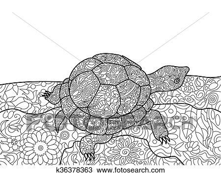 Clipart Schildkröte Ausmalbilder Für Erwachsene Vektor