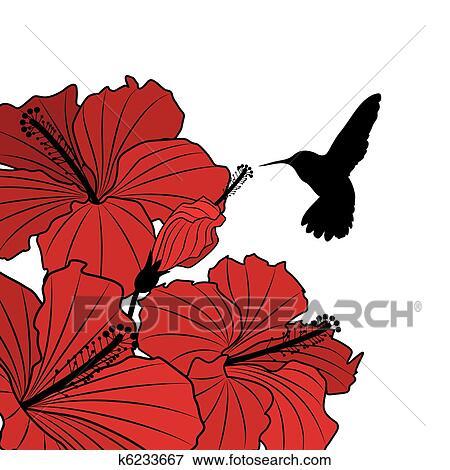 Colibri Hibiscus clipart - floral, fond, à, hibiscus, et, colibri k6233667
