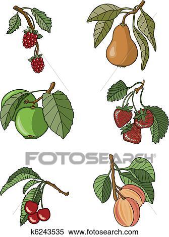 Clipart frutta assortimento k6243535 cerca clipart for Clipart frutta