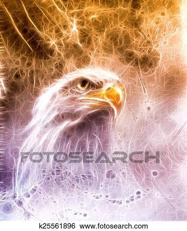 Stock Illustration Of Symbol Of American Freedom Wild Bald Eagle On