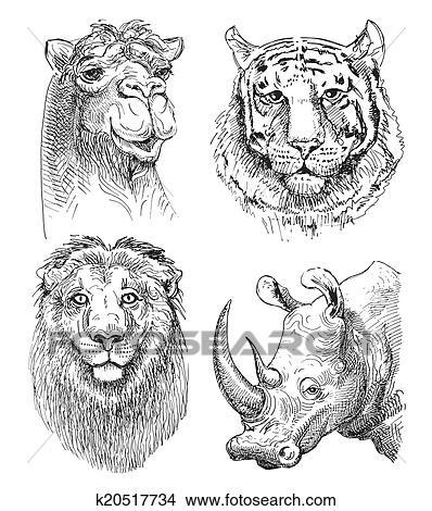 Ensemble De Safari Tête Animaux Noir Blanc Croquis Dessin Clipart