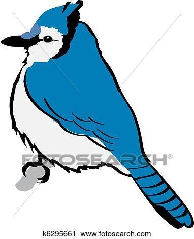 clipart of blue jay k6295661 search clip art illustration murals rh fotosearch com baby blue jay clipart blue jay feather clip art