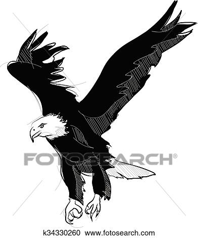 Clipart Of Vector Sketch Style Drawing Of Flying Bald Eagle