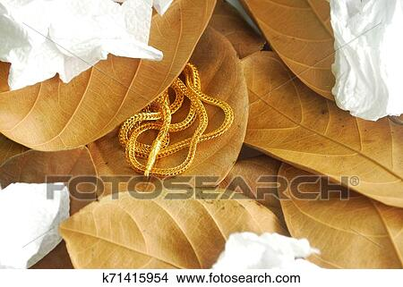 Gold Neck Weighs About 0 5 Grams Picture K71415954 Fotosearch