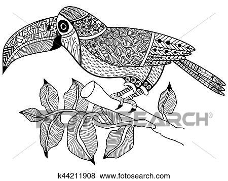 Clip Art   tukan, vogel, zweig, ausmalbilder, vektor, für