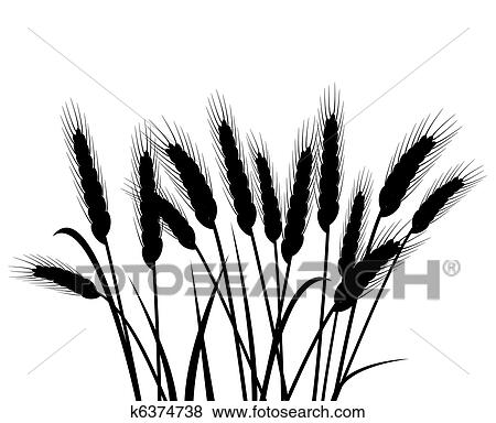 clip art of bunch of vector wheat ears k6374738 search clipart rh fotosearch com wheat clip art black and white what clip art can i use on my website