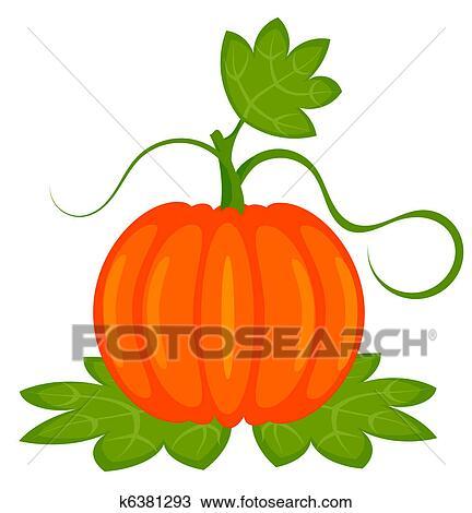 Clipart Kurbis Pflanze K6381293 Suche Clip Art Illustration