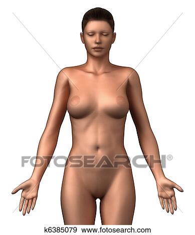 Freies lesbisches nacktes Foto