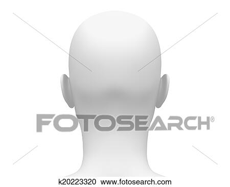 Stock Illustrations Of Female Head Muscles Anatomy Back K20223320