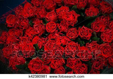 Beau Bouquet De Roses Rouges Banque Dimage