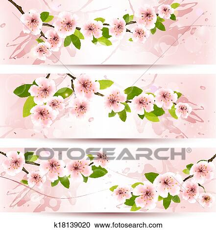 Clipart Of Three Spring Banners With Blossoming Sakura Brunch With
