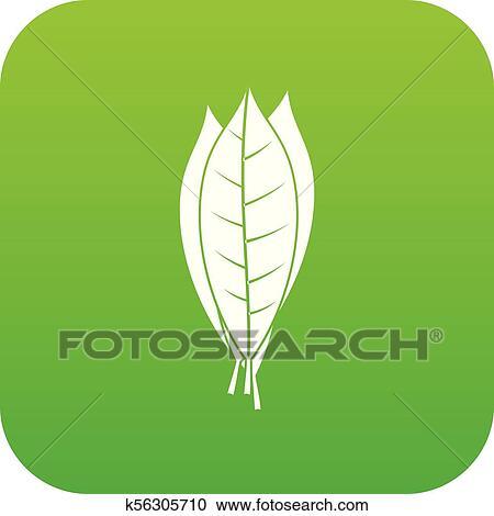 Culinario Folhas De Louro Icone Digital Verde Clipart