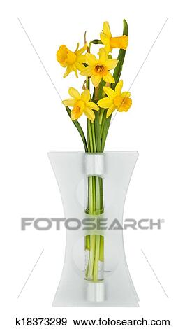 Stock Photograph Of Beautiful Yellow Daffodils Flowers In Vase
