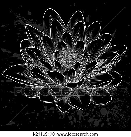 Clipart of black and white lotus flower painted in graphic style ...