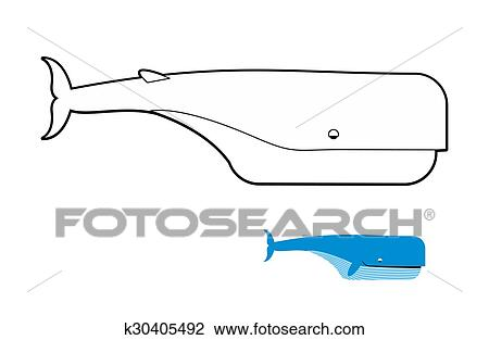 Sperm Whale Coloring Book Blue Whale Vector Illustration Clipart