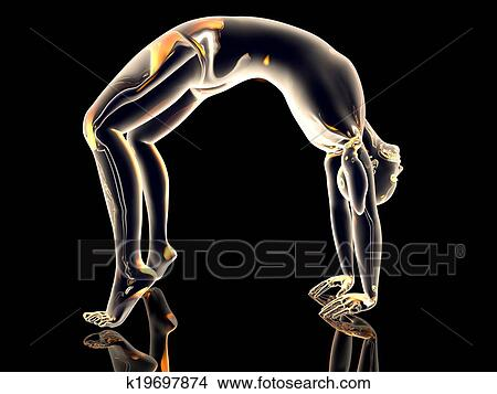 yoga  urdhva dhanurasana stock illustration  k19697874