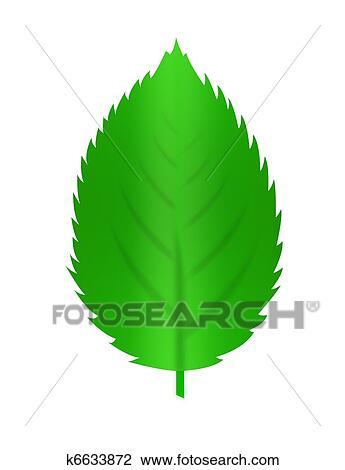 árvore De Folha Desenho K6633872 Fotosearch