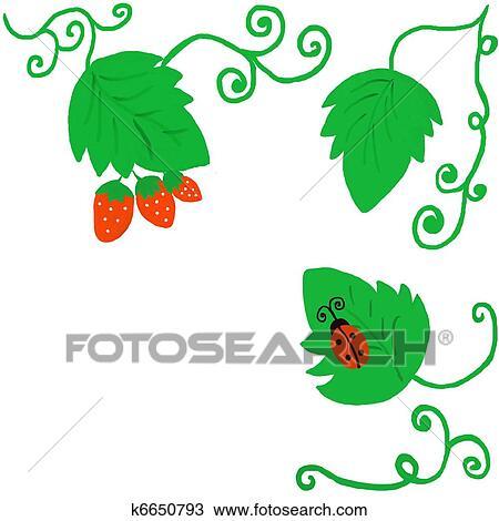 Disegno Fragola Cespuglio K6650793 Cerca Clipart Illustrazioni