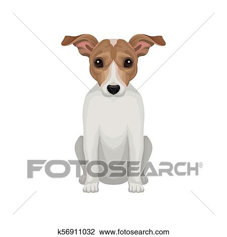 Cute Puppy Of Jack Russell Terrier Small Breed Of Hunting Dog With Short Coat And Big Shiny Eyes Detailed Vector Icon Clipart K56911032 Fotosearch