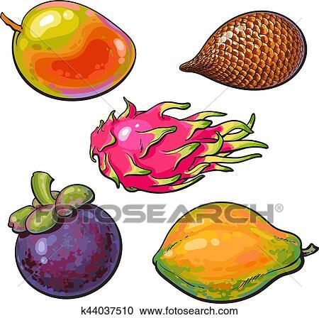 Clipart Entero Unpeeled Integral Mango Papaya Mangosteen