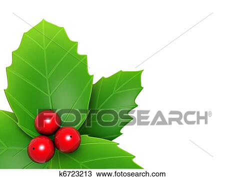 drawing of holly leaves and red berry k6723213 search clipart