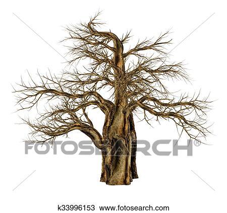 árbol De Baobab Sin Hojas Adansonia Digitata 3d Render