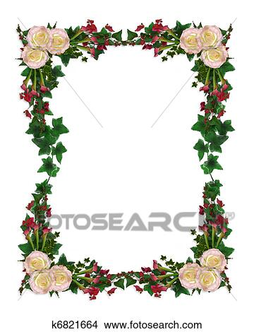 drawings of ivy and flowers border roses k6821664 search clip art