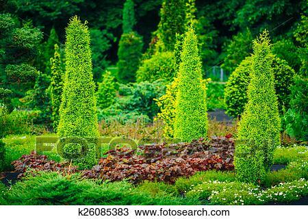 Jardin, landscaping, design., plate-bande, arbres verts, et ...