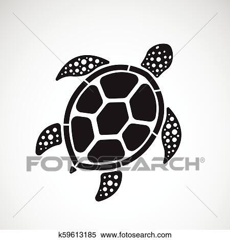 Vetorial De Tartaruga Desenho Ligado Um Branca Experiencia