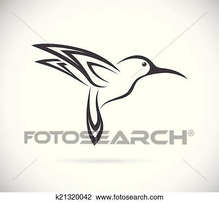Clipart Vector Imagen De Un Colibrí Diseño K21320042 Buscar