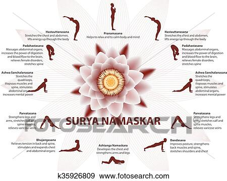 yoga infographics surya namaskar sequence clip art
