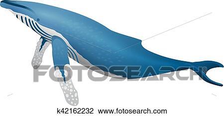 Baleine Bosse Icone Isole Blanc Fond Dessin Anime Realiste