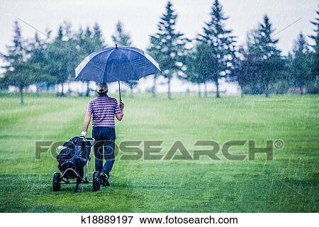 Banque de Photo - golfeur, sur, a, jour pluvieux, partir, les, terrain de golf. Fotosearch