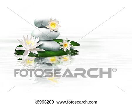 banque de photographies n nuphar k6963209 recherchez. Black Bedroom Furniture Sets. Home Design Ideas