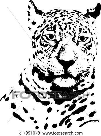 Clip Art Of Jaguar Head K17991078