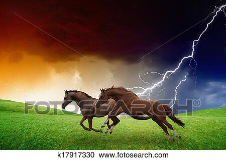 Two Horses Lightning Storm Stock Photography