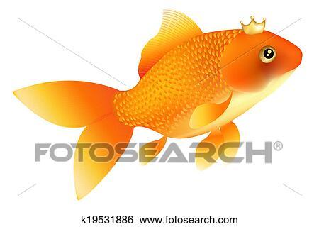 金魚 イラスト K19531886 Fotosearch