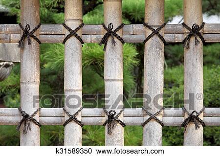 banques de photographies - bambou, barrière k31589350 - recherchez