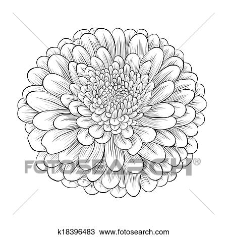 Clipart of beautiful monochrome black and white flower isolated on clipart beautiful monochrome black and white flower isolated on white background fotosearch search mightylinksfo
