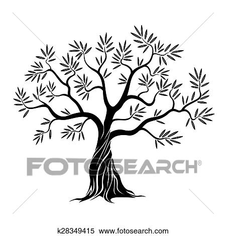 Vector Olive Tree Clipart K28349415 Fotosearch