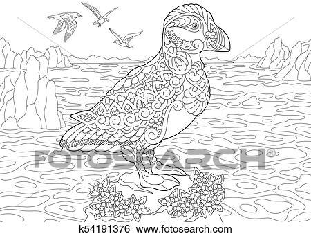 Clip Art - frailecillo, ave marina k54191376 - Buscar Clip Art ...